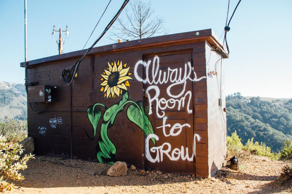 "Wooden cabin with sunflower graffiti and painted words ""Always room to grow"""